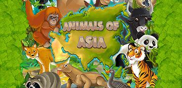 animals-asia